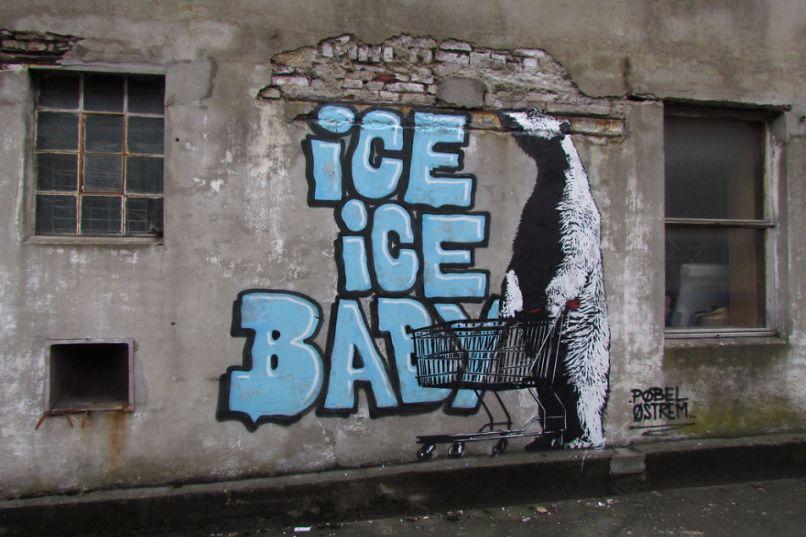 Ice Ice Baby - Gấu trắng Bắc cực cũng phải ra chợ tìm mua băng tuyết. Photo by Boredpanda.